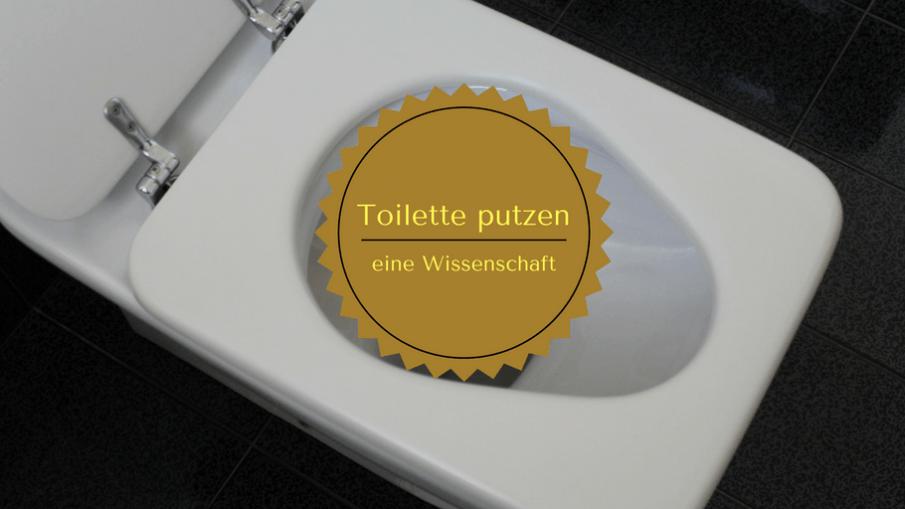 Toilette putzen - eine Wissenschaft auf kinderalltag.de