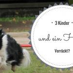 3 Kinder und ein Hund – Verrückt?