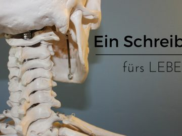 Ein Schreibtisch fürs Leben. Ein höhenverstellbarer Schreibtisch von Mollfunktion vorgestellt auf kinderalltag.de