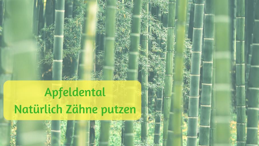 Apfeldental - Natürlich Zähne putzen auf kinderalltag.de