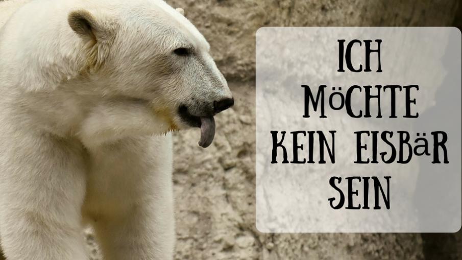 Ich möchte kein Eisbär sein auf kinderalltag.de
